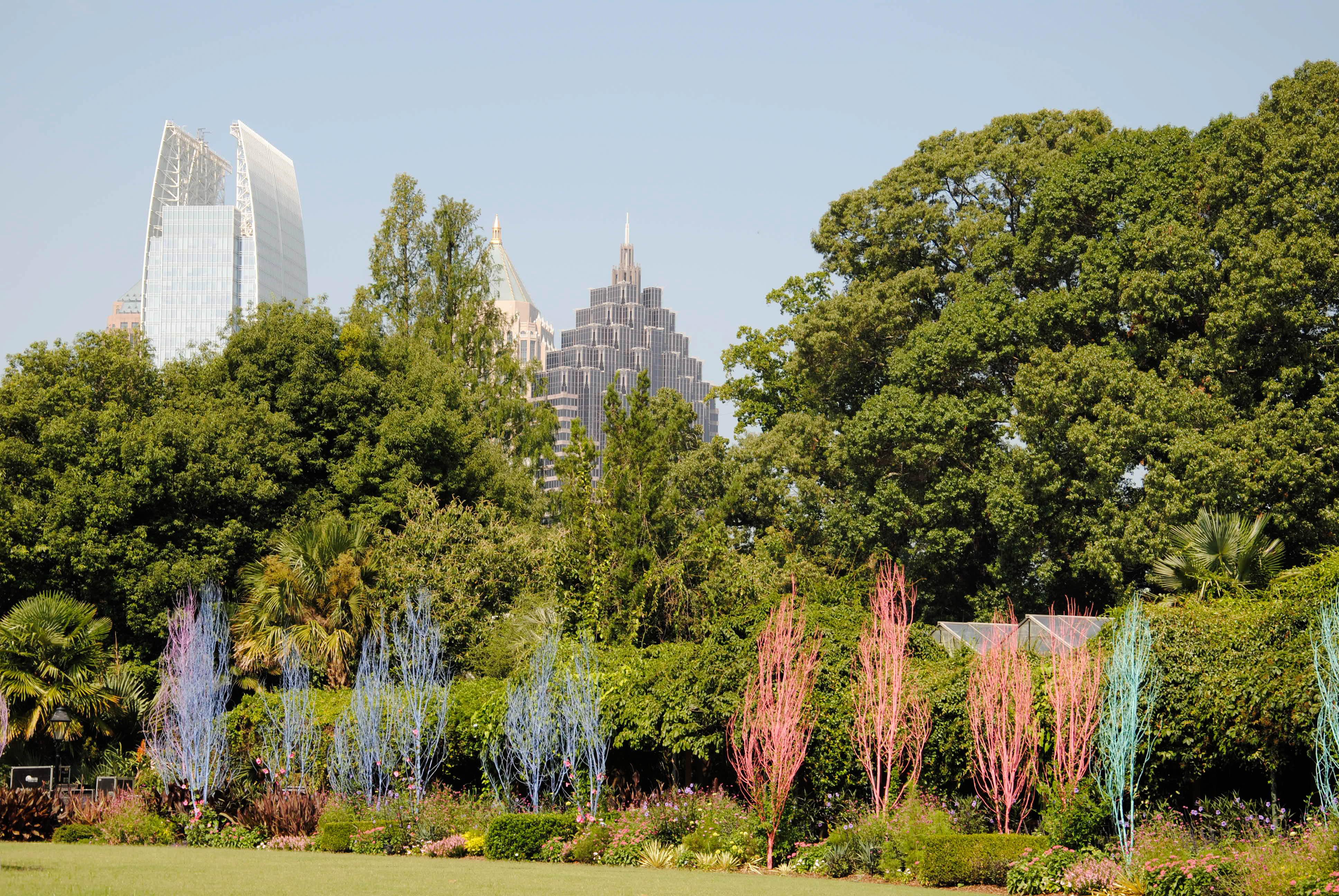 Atlanta botanical gardens and the curious garden lynne 39 s - Atlanta botanical garden membership ...
